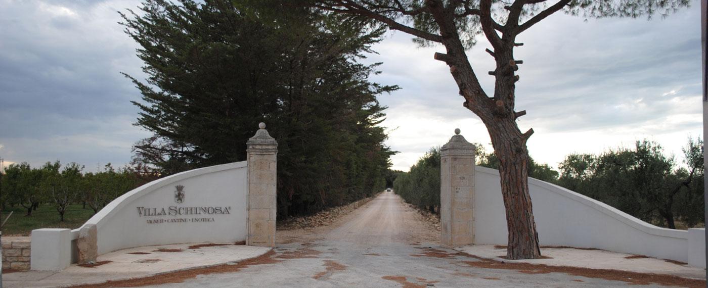 Ingresso di Azienda Agricola Villa Schinosa Puglia