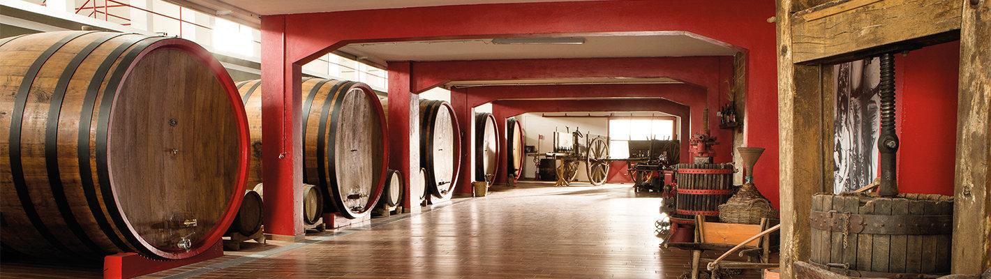 Vista della Cantina dell'azienda vinicola Coppi