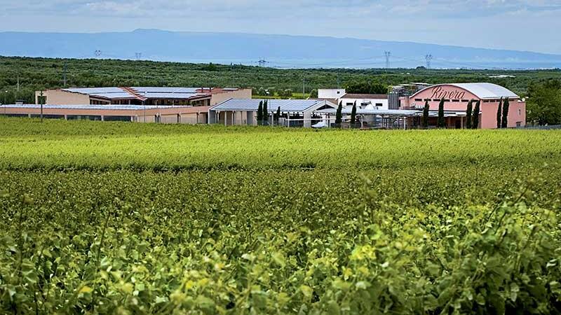 Vista della Azienda Agricola Rivera dall'esterno