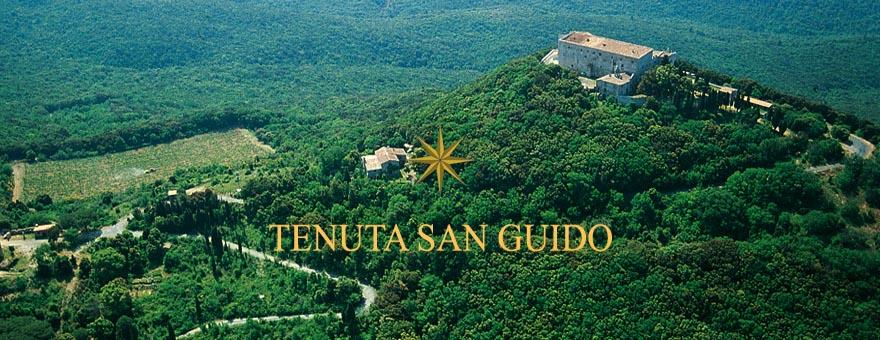 Vista dall'alto del territorio di Tenuta San Guido